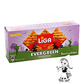 Liga Evergreen biscuits aux fruits des bois 250g