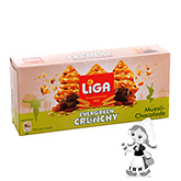 Liga Evergreen biscuits croustillants au muesli et chocolat 225g
